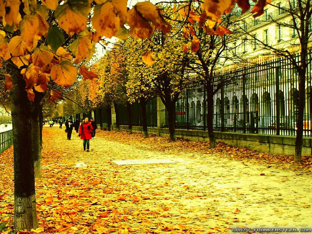 fall in paris france - photo #36
